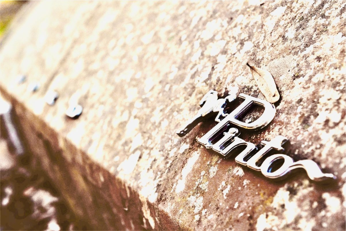 Old Pinto brand badge